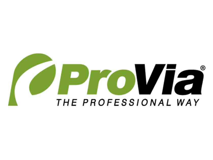 ProVia Windows